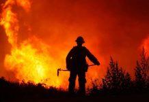 incendios-forestales-nuevo-leon