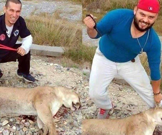 cazadores-de-puma