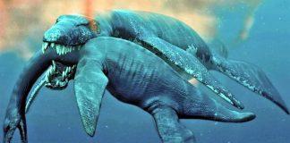 nuevo-leon-monstruo-de-aramberri-dinosaurio-mar