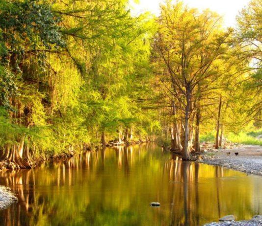 rio-ramos-allende