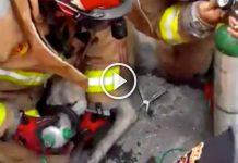 proteccion-civil-nuevo-leon-bomberos