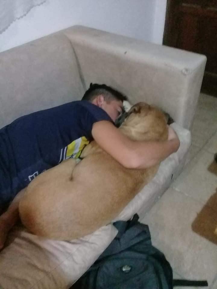perro-muerte-pirotecnia