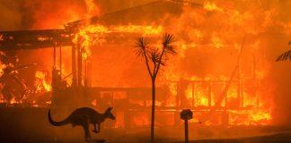 incendios-australia