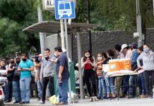 transporte-paradas-camiones-ecovia-metro-covid-19