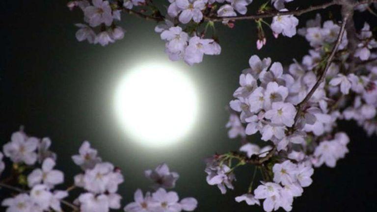 superluna mayo