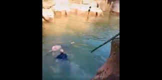 (Viral) De cónsul a héroe: británico salva a joven de morir ahogado en China